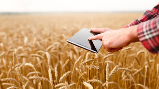 Smart farming using modern technologies in agriculture. Man agronomist farmer touches and swipes the app on digital tablet computer in wheat field, selective focus (verweist auf: Treffen im Rahmen des europäischen Forschungsnetzwerks ERA-NET ICT-AGRI-2)